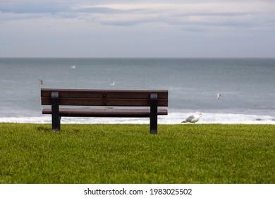 View of a lawn bench overlooking the North Sea coast, Peterhead, Aberdinshire, Scotland, UK.