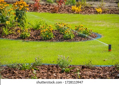 View Of Lawn Landscaping and Sprinkler System Watering Greenery Area.