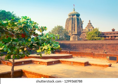 View of Lingaraj Temple - one of the oldest hindu temples of Lord Shiva. Bhubaneswar, Orissa, India