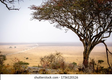View from Lions hill in Serengeti National Park Tanzania, july 2017