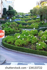 A view of Lombard Street, Russian Hill, San Francisco, USA