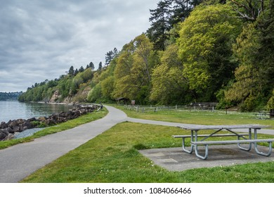 A view of lush trees along the shore at Saltwater State Park in Des Moines, Washington.