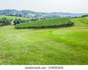 A view of lush vineyard on a slope at Zlati Gric, a wine estate Slovenske Konjice in Slovenia - Shutterstock ID 1749355592