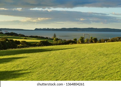 View of Macleans park sunlit green hills with Hauraki Gulf islands in background