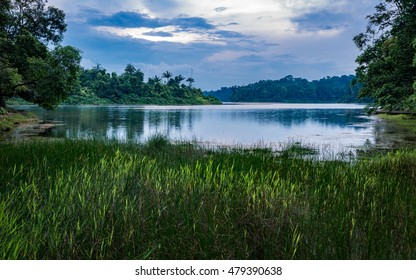 View from MacRitchie Reservoir Park, Singapore