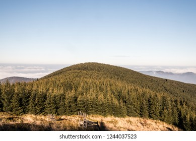view to Malchor hill from hiking trail bellow Lysa hora hill in Moravskoslezske Beskydy mountains in Czech republic during nice autumn day
