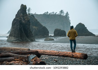 View of a man on a beach in Olympic National Park, Washington.