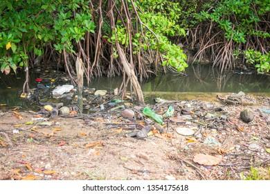 A view of a mangrove full of trash on Itamaraca Island - Pernambuco, Brazil