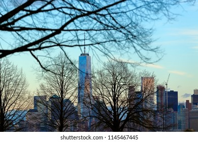 A view of the Manhattan downtown skyline with leafless trees in front of it depicting the winter season in New York City