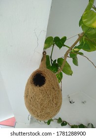 view of a manmade bird nest hanging on the wall