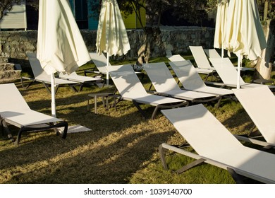 View of many sunbeds and closed umbrellas