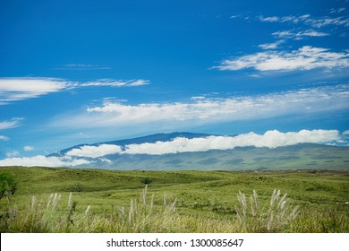 A view of Mauna Kea from Waimea on the Big Island of Hawaii. Green pasture land in the foreground. Blue sky and white clouds.