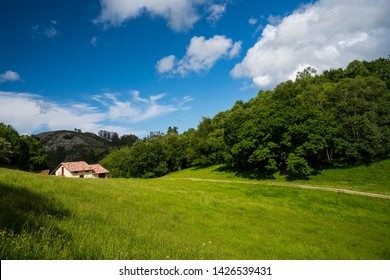 View of a meadow with a house in the distance in Asturias Spain.