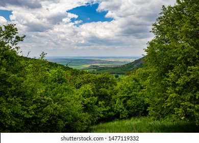 View from a meadow on a hiking trail in a dense deciduous forest in Macin mountains in Romania towards agricultural fields far down in background under a cloudy sky during spring-summer