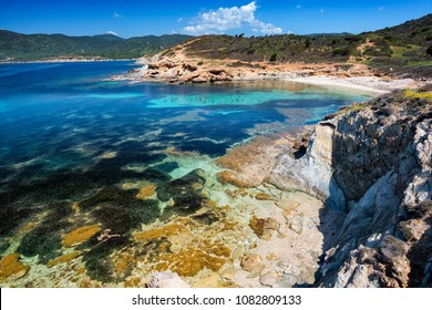 View of Mediterranean Sardinian sea with a lot of tuft of seagrass under the water, Neptune grass, Posidonia oceanica.