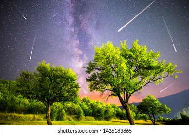 A view of a Meteor Shower and the Milky Way. Green plum trees with plums high in the mountain in the foreground. Night sky nature summer landscape. Perseid Meteor Shower observation.