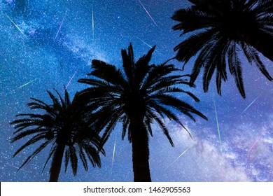 A view of a Meteor Shower and the Milky Way with three palm trees silhouettes in the foreground. Night sky nature summer landscape. Perseid Meteor Shower observation. Colorful shooting stars.