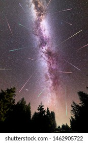 A view of a Meteor Shower and the purple Milky Way with pine trees forest silhouette in the foreground. Perseid Meteor Shower observation. Night sky nature summer landscape. Vertical. Shooting stars.