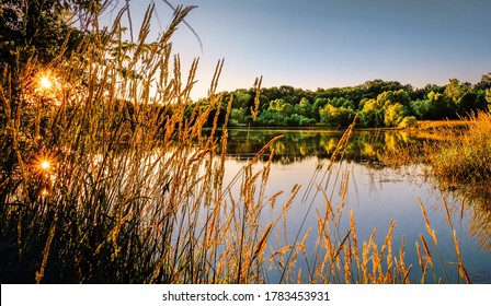 View of Midwestern lake at sunset early in the fall; setting sun reflects in water;  dry grass in foreground; forest and clear sky in background