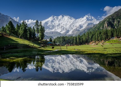 View of mighty Nanga Parbat Mountain (8,126 meters), also known as the Killer Mountain is one among the 14 eight-thousanders.