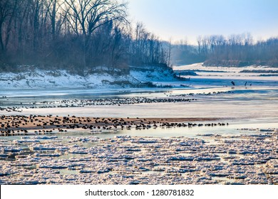 View of Missouri River with ice floes floating downstream and geese sitting on sandbar in the middle of stream at sunset