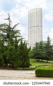 view of modern high-rise building from the city Park of the Chinese city of Dalian. green trees with skyscraper in the background. Travel in China. Dalian, China - august 12, 2018