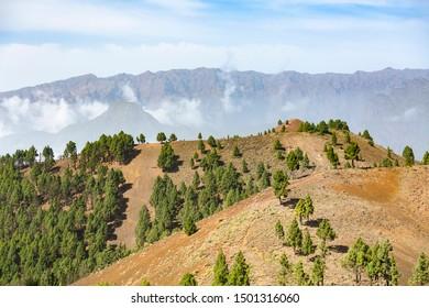 View from the Montana de los Charcos on the Cumbre Vieja in La Palma, Spain to the Pico Birigoyo with the Caldera de Taburiente in the background.