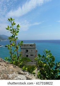 View in Monterosso, Italy