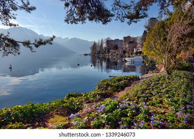 View to Montreux city from Geneva lake embankment at sunny day. Switzerland