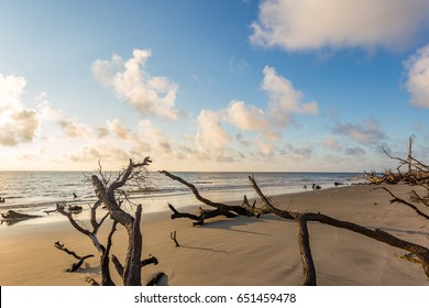A view of a morning sunrise over the Atlantic Ocean at Driftwood Beach on Jekyll Island, Georgia.