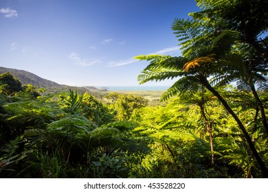 The view from Mount Alexandra lookout in the Daintree region towards the Great Barrier Reef and Coral Sea on a sunny winter's day in Queensland, Australia