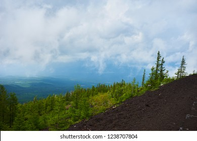 View from mount fujiyama onto a forest