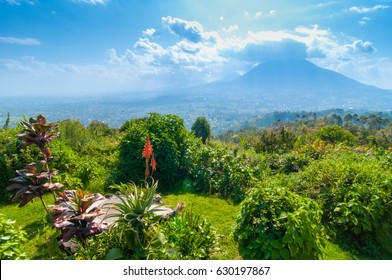 View of mount Sabyinyo, one of the volcanoes in the Volcanoes National Park in Rwanda