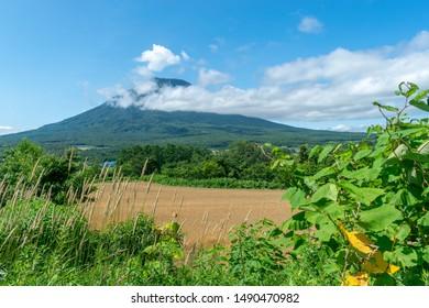 View of mount Yotei, Niseko, Hokkaido, Japan