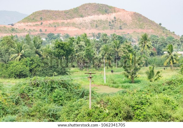 A view of a mountain with coconut greenery trees looking awesome.