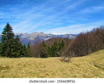 View of mountain Crna Prst  in Julian Alps, Slovenia and snow covered peak of Triglav in the back taken from the slopes of mountain Porezen and a dry grass covered meadow in front - Shutterstock ID 1556638916