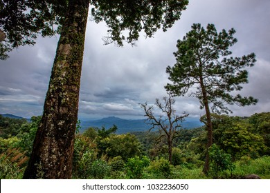 A view of the mountain Kew Fin - Chaeson National Park range through the branches in Lampang