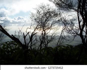 View from mountain on island of Lanai, Hawaii
