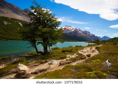 View of mountain peaks and valley with trees at foothills of Andes. Patagonia, Argentina, Chile, Andes