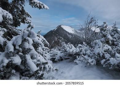 Blick vom Berg Wank nach Hoher Fricken mit Schnee in Bayern, nahe Garmisch-Partenkirchen im Oktober