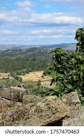 view of the mountains in the Beira Baixa region in Portugal.