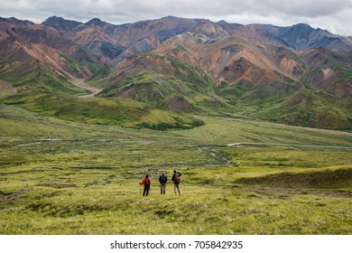 view  of mountains to the north, across park road in denali national park, near eielson visitor center