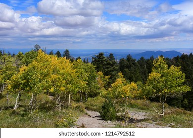 view of mountains and pretty golden aspen trees in fall  from  sandia peak, near albuquerque,  new mexico