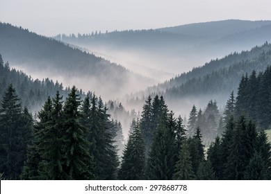 View From Mountains to the Valley Covered with Foggy. Foggy Landscape.