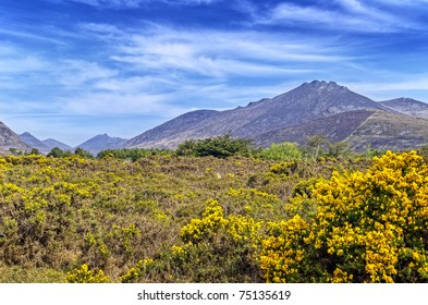 View of the Mourne Mountains, Ireland.