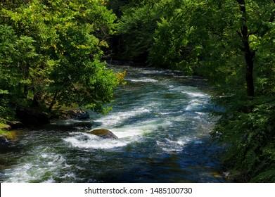 View from a moving train of the Nantahala River in North Carolina's Nantahala National Forest
