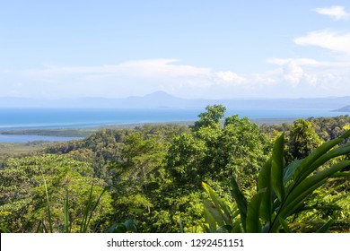 View from Mt Alexandra Lookout to the coast and The Daintree River in Tropical North Queensland, Australia