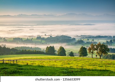 View from Mt. Auerberg at sunrise, Valley full of Fog, the Alps behind, Bavaria, Germany