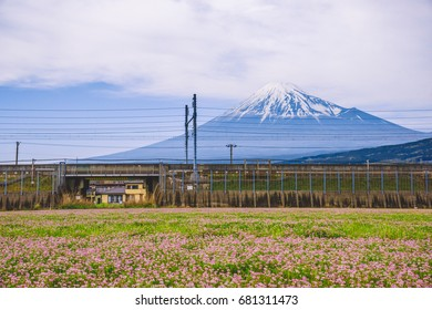 View of Mt Fuji , Shizuoka, Japan.