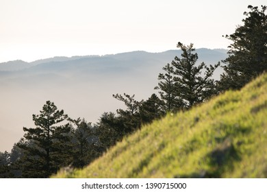 View from Mt. Tamalpais with blurred grass in foreground and pin